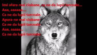 Adda - Lupii (Versuri de la Versurionline Youtube RO)