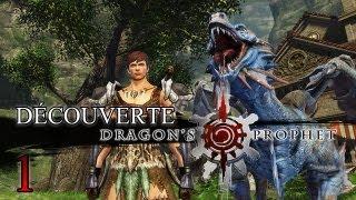 Découverte : Dragon