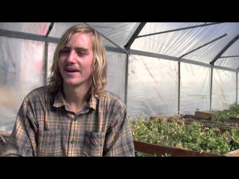 Sustainable Agriculture - Organic farming