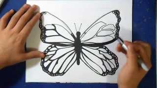 Cómo dibujar una Mariposa | How to Draw  butterfly