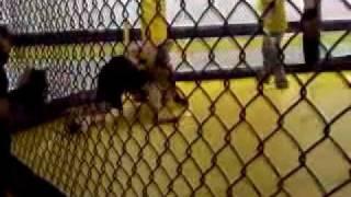 MMA CAGE Broken collar bone