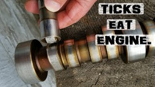 Removing Ticks from Engines | Manly-Man Skillz