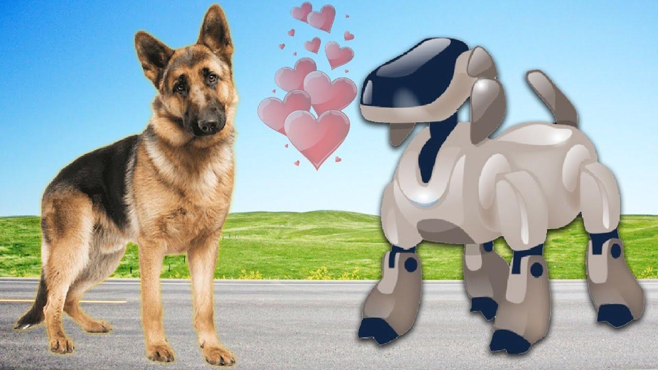 రోబో డాగ్ Robo Dog Moral Story - Telugu Kathalu - 3D Telugu Fairy Tales