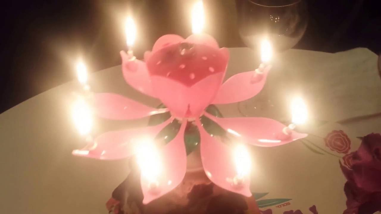 The Most Amazing Happy Birthday Lotus Candle Jola To My Youtube