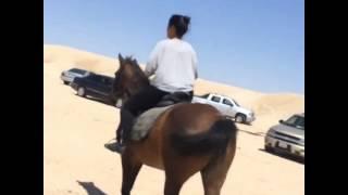 بدور عبد الله - كواليس مسلسل المعزب