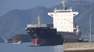 KMTC 省エネコンテナ船「SUNNY CANNA」