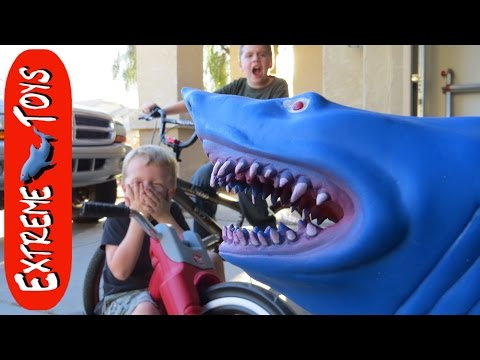 Wild Shark comes in the Front Door and chases the Boys!  Insane Toy Shark Attack