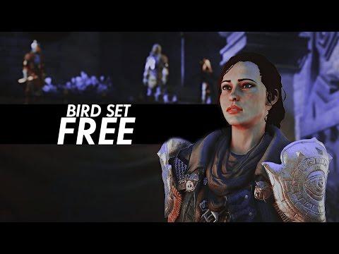 bird set free [Dragon Age: Inquisition]