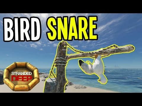 NEW BIRD SNARE and OCEAN CURRENT - Stranded Deep Gameplay - Episode 13