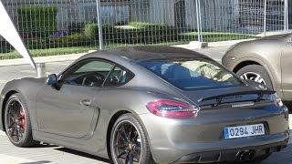Porsche Cayman GTS 2015 Videos