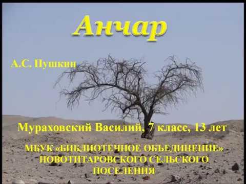 Изображение предпросмотра прочтения – ВасилийМураховский читает произведение «Анчар» А.С.Пушкина