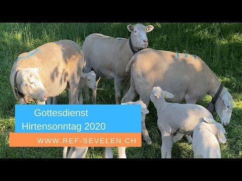 Gottesdienst zum Sonntag Miserikordias Domini (Hirtensonntag) am 26.April 2020 Sevelen