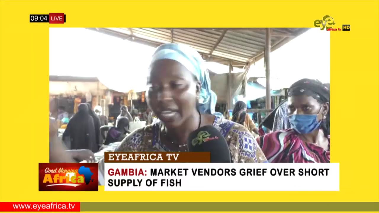Download GAMBIA: MARKET VENDORS GRIEF OVER SHORT SUPPLY OF FISH: EYEAFRICA TV