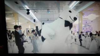 Ресторан к8 необычный мишка и панда