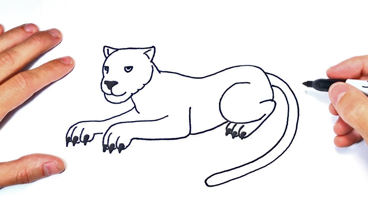 Escarpado látigo banco  Cómo dibujar una Pantera Paso a Paso | Dibujo de Pantera - YouTube