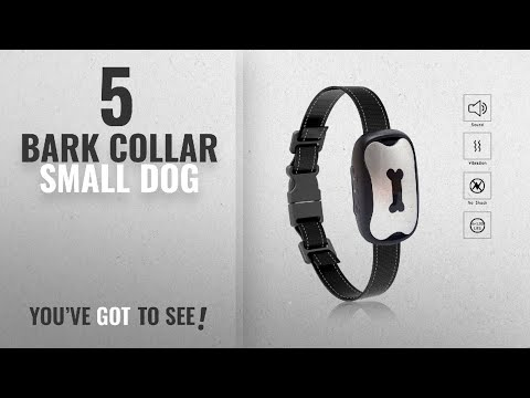 top-5-bark-collar-small-dog-[2018-best-sellers]:-yappy-dog-bark-collar-[new-version]-humanely-stops