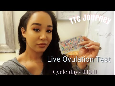 Live Ovulation Test| CD 9,10,11| Cycle 3| TTC Journey