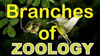 Branches of Biology - Branches of Zoology.