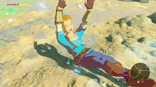 Breath Of The Wild | Giant Link