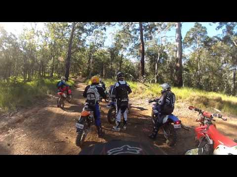 Gatton Forestry ride GOPRO