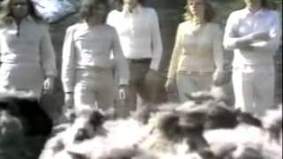 Paul And Linda Mccartney - Mary Had A Little Lamb.avi