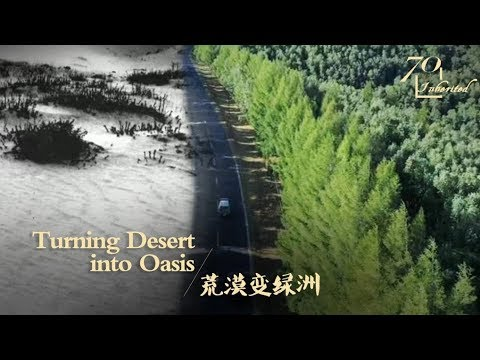 Green Miracle: Forest Workers Turn Desert Into Oasis In N China