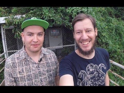 Кейс Reconomica.ru: 60к человек в день с Дзена