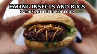 Eating Insects & Bugs - Is this the future - Entomophagy