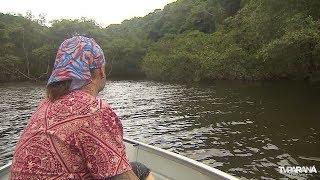 As Aventuras do Richard no Paraná: Ilha da Cotinga