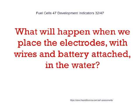 Fuel Cells 47 Development Indicators