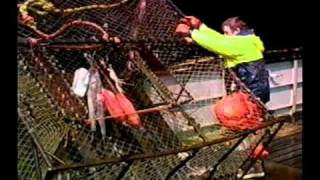 Bering Sea Adventures with Chris Trosvig -- Episode 2: Crab Fishing