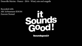 Stereo Recording - Deauville Marina - Windy/Rainy