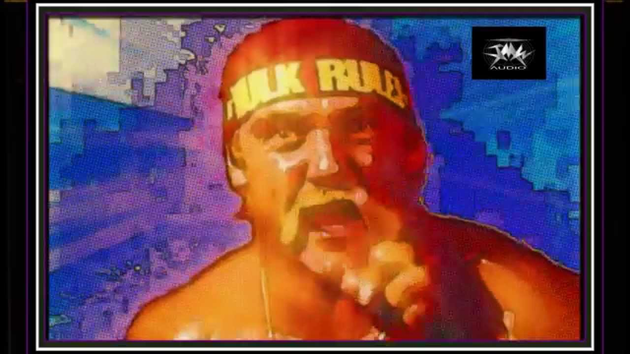 Hulk hogan rap-8999