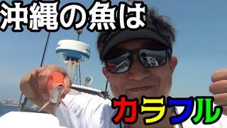 #2 沖縄の謎の魚オジサンを釣る!! thumbnail