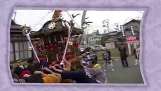 平成26年 平塚市金目・北金目神社例大祭 神輿渡御