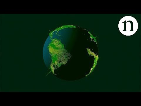 How many trees are there in the world?
