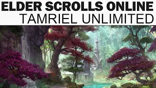 Elder Scrolls Online: Tamriel Unlimited Let