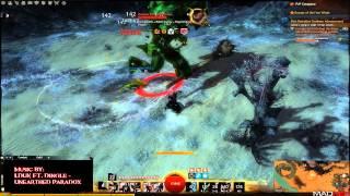 Guild Wars 2 - Condition Thief vs Champion Risen Abomination solo