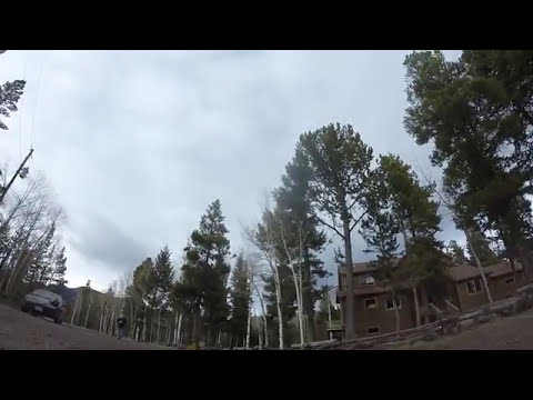 Quadcopter Flight #2 Wind Gust & Tree!