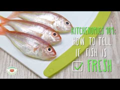 How To Check If The Fish Is Fresh