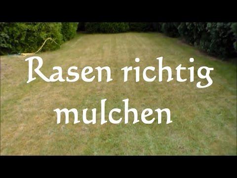 Rasen Mulchen Vorteile Und Nachteile Im überblick