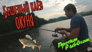 Бешенный клёв окуня на блесну отличная рыбалка и отличный отдых на лодке