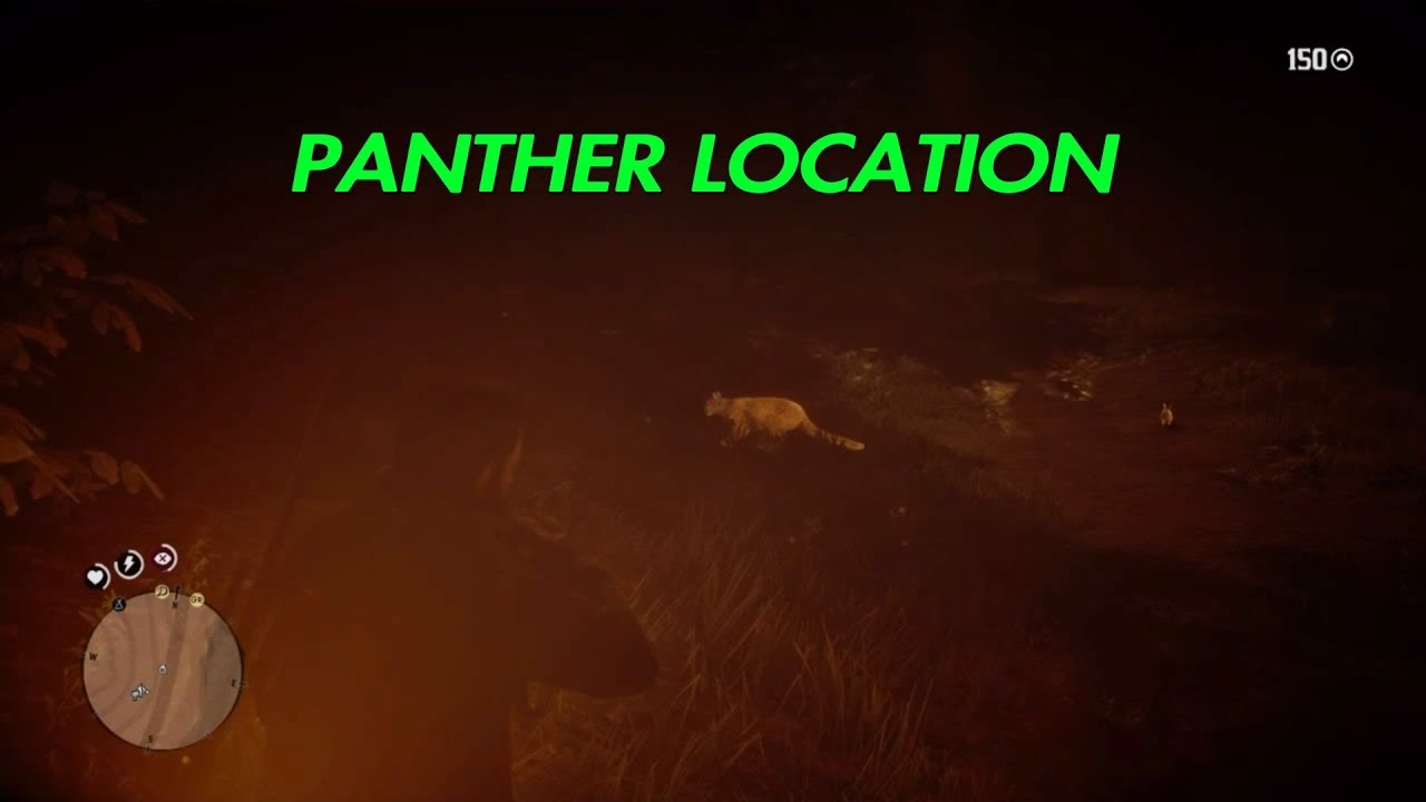 Panther hot spot, go at night. They were spawning every time