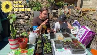 Pattern Pots Comp and Salad Sowing Guide   08