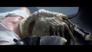 Video Alien:Every Xenomorph scene download MP3, 3GP, MP4, WEBM, AVI, FLV September 2018