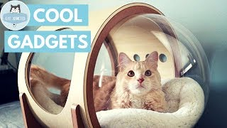12 Useful Gadgets For Cats