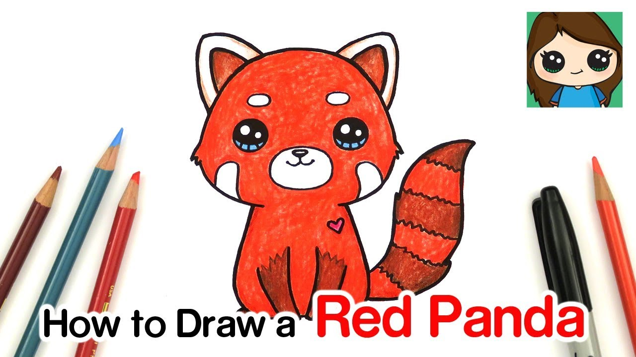How to draw a red panda youtube
