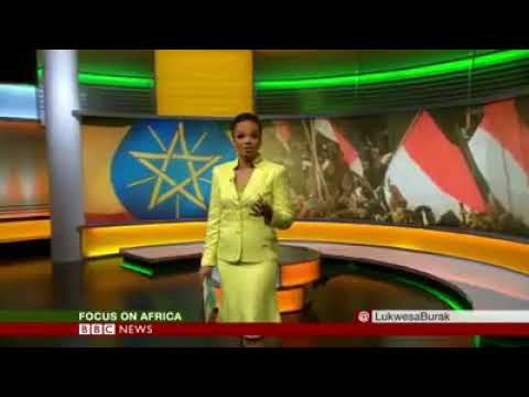 BBC Africa Jan 2018 ETHIOPIA PRISONERS RELEASE The opposition leader Merera Gudina