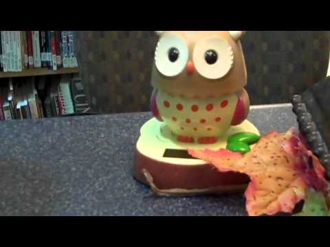 Blanchester High School Library Owl