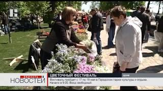 На фестиваль цветов в Тамбове приедут более 150 участников из разных городов